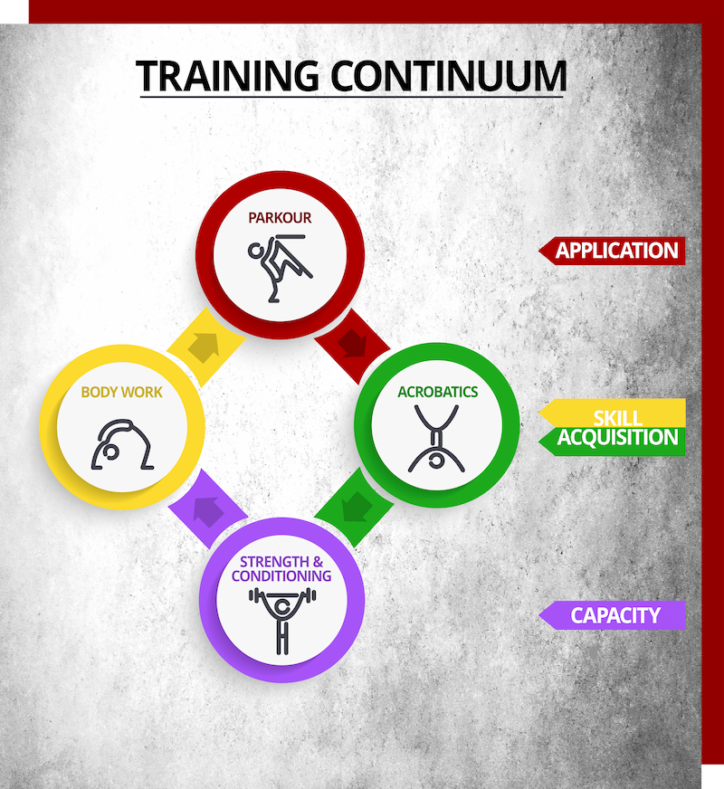 Training Infographic